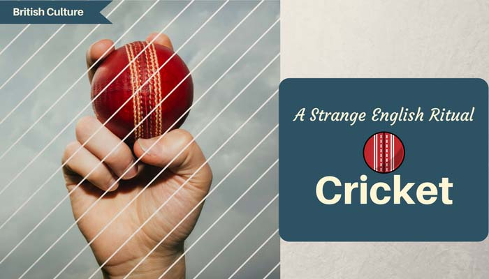 A strange English Ritual - Cricket