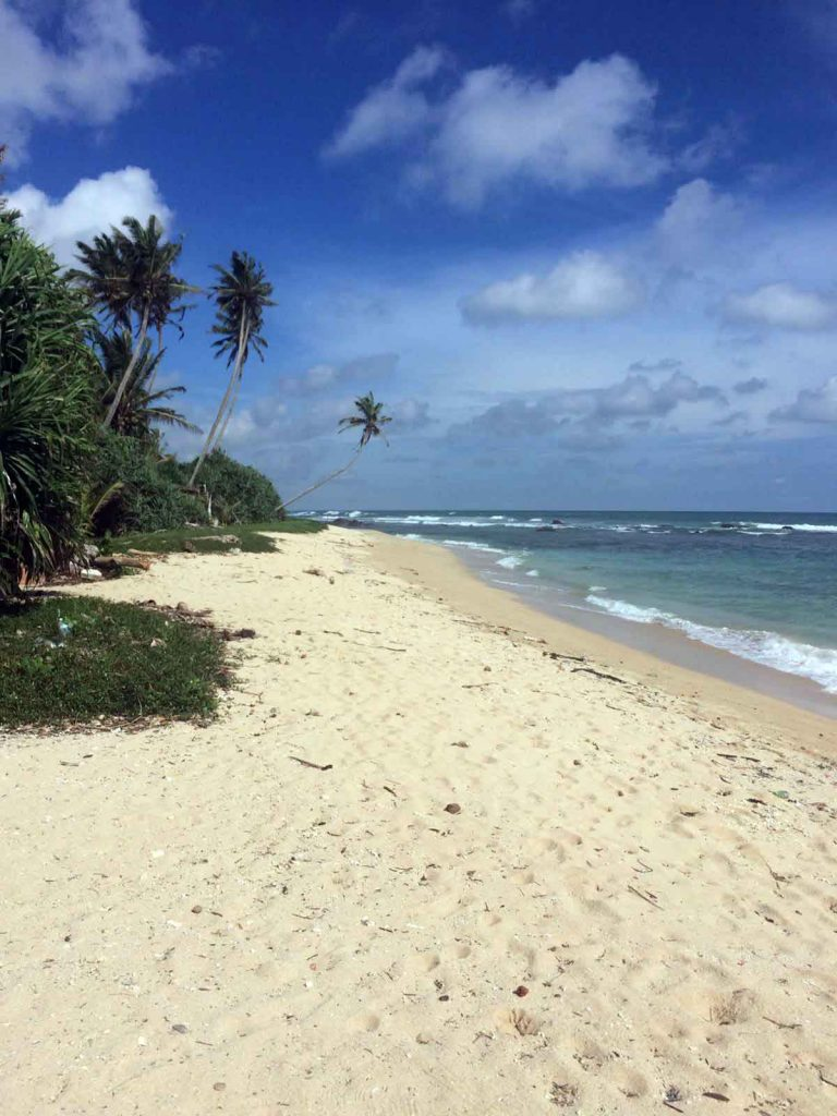 view_of_the_beach_outside_thei_house